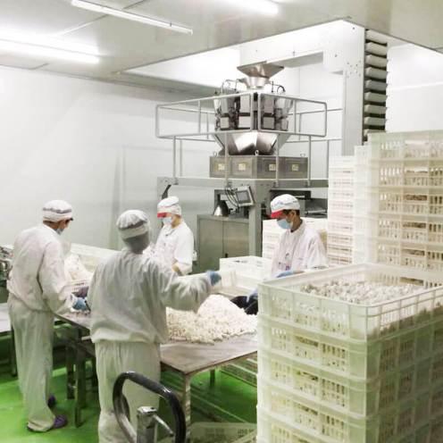 Leadsky International Enterprise Limited - Factory
